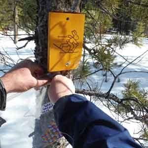 March Break Sticker Hunt