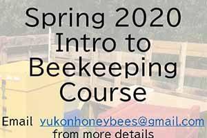 North of 60 Beekeeping
